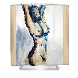 04880 Delighted Shower Curtain