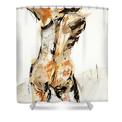 04935 Swinger Shower Curtain