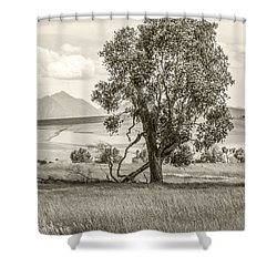 #0552 - Southwest Montana Shower Curtain