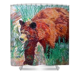 073015 Alaska Black Bear Shower Curtain
