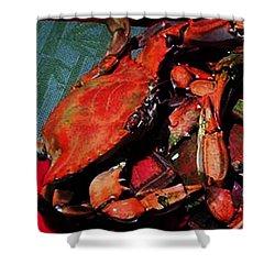 090815 Digital Oil Crabs Shower Curtain