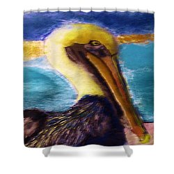 091415 Pelican Shower Curtain