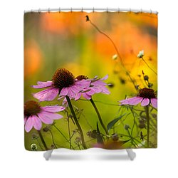 Coneflower Symphony Shower Curtain