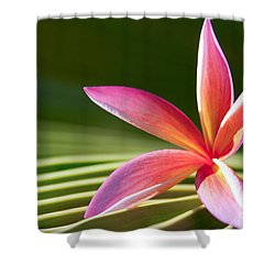 Shower Curtain featuring the photograph A Pure World by Sharon Mau