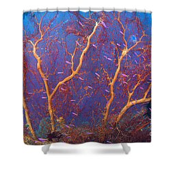 A Red Sea Fan With Purple Anthias Fish Shower Curtain by Steve Jones