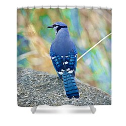 A Rock Beauty Shower Curtain