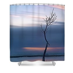 Shower Curtain featuring the photograph A Tree  by Bruno Rosa