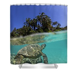 Above N Below Shower Curtain by James Roemmling