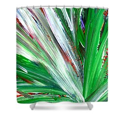 Abstract Explosion Series 92215 Shower Curtain