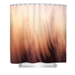 Abstract Grunge Background Shower Curtain