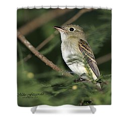 Acadian Flycatcher Shower Curtain