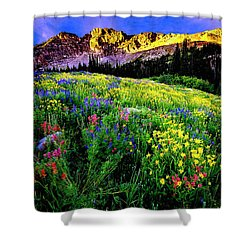 Shower Curtain featuring the photograph Albion Basin by Norman Hall