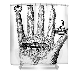 Alchemical Symbols Shower Curtain