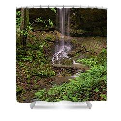 Alcorn Falls. Shower Curtain