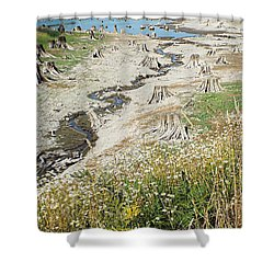Alder Lake Stumps Shower Curtain