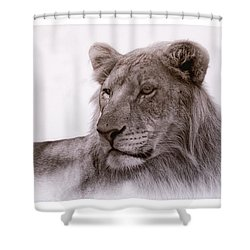 All Grown Up Shower Curtain