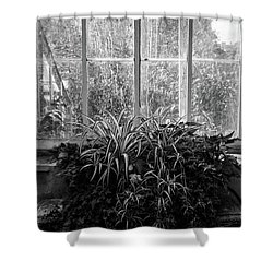 Allan Gardens Shower Curtain