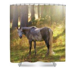 Ambient Grace Shower Curtain