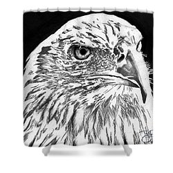 American Bald Eagle Shower Curtain by Bill Richards