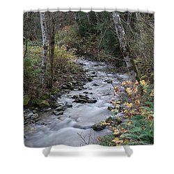 Shower Curtain featuring the photograph An Autumn Stream by Jeff Swan