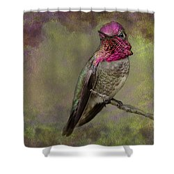 Anna's Hummingbird Shower Curtain