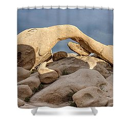 Arch Rock Panorama In Joshua Tree Shower Curtain