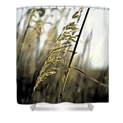 Artistic Grass - Pla377 Shower Curtain by G L Sarti