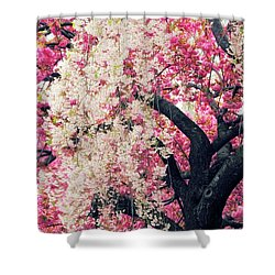 Asian Cherry Vignette Shower Curtain by Jessica Jenney