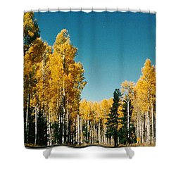 Aspens  Shower Curtain by Fred Wilson