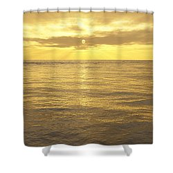 Shower Curtain featuring the digital art Ocean View by Mark Greenberg