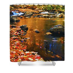 Autumn Afternoon Shower Curtain