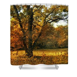 Autumn Arises Shower Curtain by Jessica Jenney