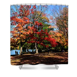 Autumn Leaves In Prospect Park Shower Curtain by Diane Lent