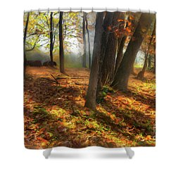 Autumn Shadows In The Blue Ridge Ap Shower Curtain by Dan Carmichael