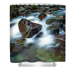 Avalanche Creek Rapids Shower Curtain