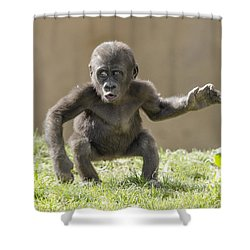 Baby Gorilla Shower Curtain