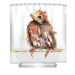 Baby Cardinal - New Beginnings Shower Curtain