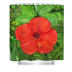 Shower Curtain featuring the painting Balinese Hibiscus Rosa by Melly Terpening