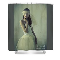 Ballerina Shower Curtain by Diane Diederich