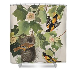 Baltimore Oriole Shower Curtain by John James Audubon