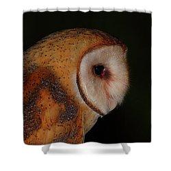 Barn Owl Profile Shower Curtain