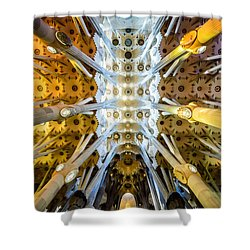 Basilica De La Sagrada Familia Shower Curtain