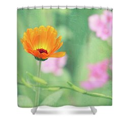 Be Beautiful Shower Curtain by Robin Dickinson