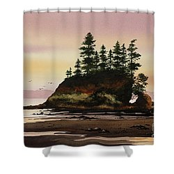 Shower Curtain featuring the painting Beautiful Shore by James Williamson