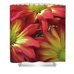 Shower Curtain featuring the photograph Beautiful Trio by Allen Beatty