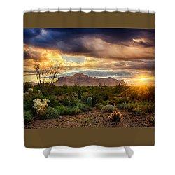 Beauty In The Desert Shower Curtain