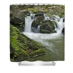 Big Pup Falls 3 Shower Curtain by Michael Peychich