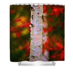 Birch Tree Shower Curtain