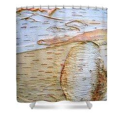 Birch Tree Bark Shower Curtain by Todd Breitling