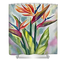 Bird Of Paradise Flowers Shower Curtain